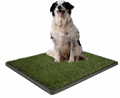 Houseboat Dog Potty Training Pads